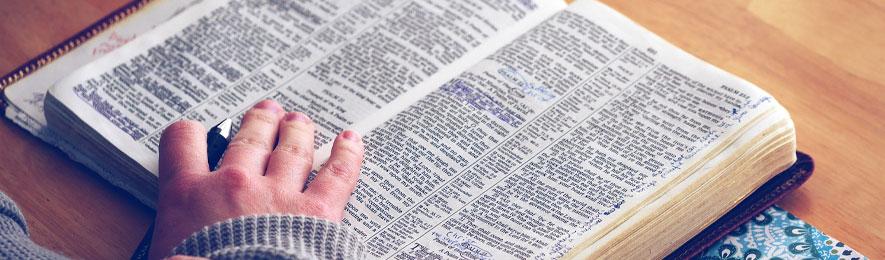 Bibelsamtal våren 2021