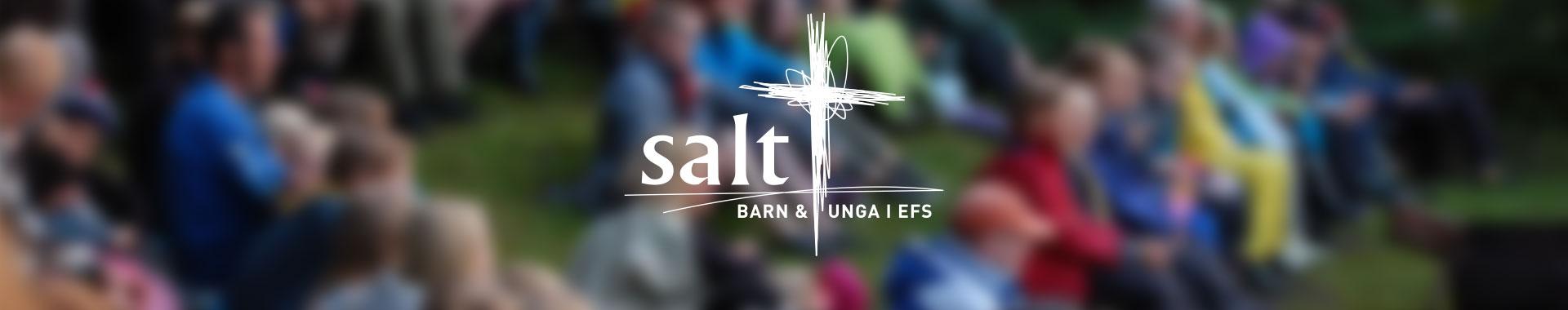 Information om Salt